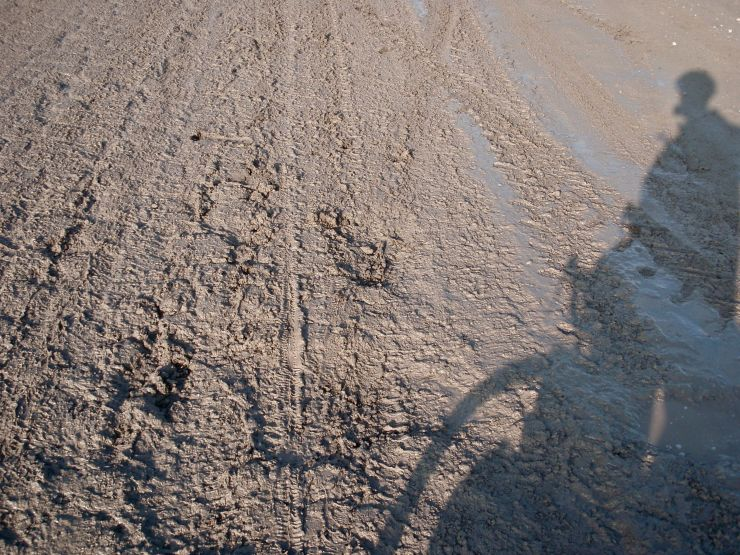 Uzbek single-track.